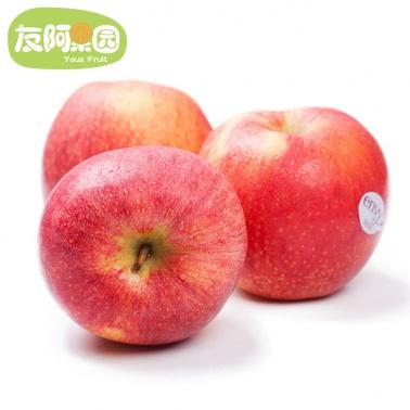 【友阿果园】新西兰爱妃苹果4个装 果体丰满约250g/个